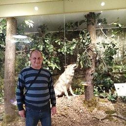 Алексей, 44 года, Донской