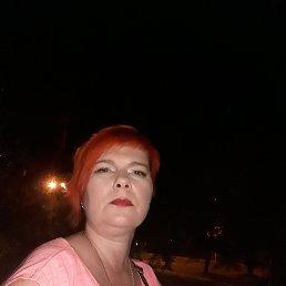 Надюшка, 36 лет, Дружковка