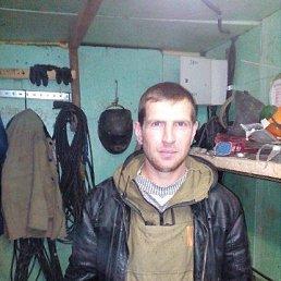 Алексей, 32 года, Заринск