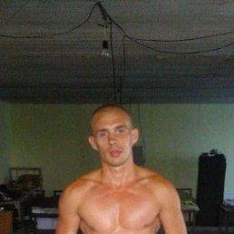 Артем, 33 года, Шостка