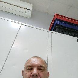Владимир, 52 года, Саратов