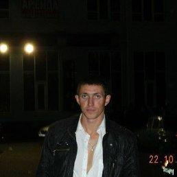 Алексей, 36 лет, Новороссийск