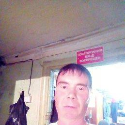 Анатолий, 46 лет, Березники