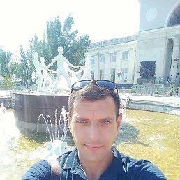 Александр, 42 года, Волгоград
