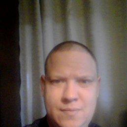 Андрей, 38 лет, Енакиево