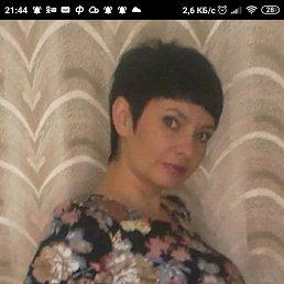 алена, 37 лет, Омск
