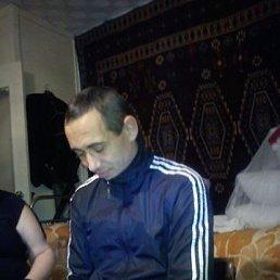Сергей, 40 лет, Новосибирск