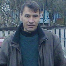 Владимир, 46 лет, Новоград-Волынский