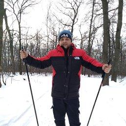 Илья, 39 лет, Саратов