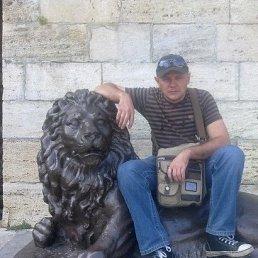 Михаил, 45 лет, Ставрополь