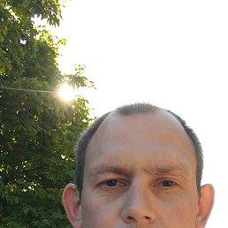 Андрей, 36 лет, Конотоп