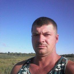Никита, 29 лет, Воронеж