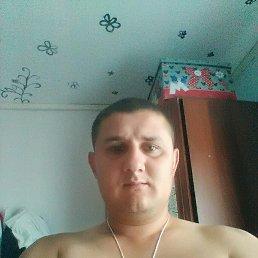 Сергей, 28 лет, Ижевск
