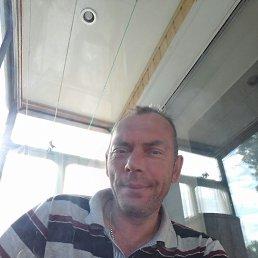 Игорь, 46 лет, Курск