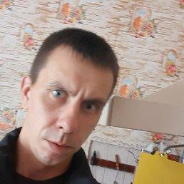 Алексей, 29 лет, Калининград