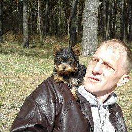 Дмитрий, 48 лет, Протвино
