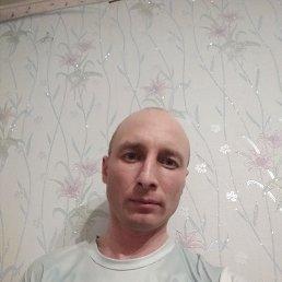 Фото Алексей, Ижевск, 37 лет - добавлено 26 мая 2020