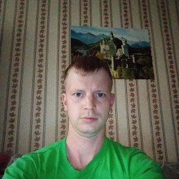 Александр, 29 лет, Кострома