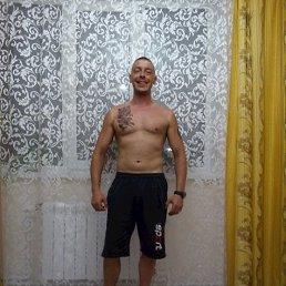 Кирилл, 29 лет, Бронницы