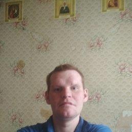 Серега, 29 лет, Серпухов