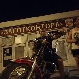 Денис, 33 года, Воронеж