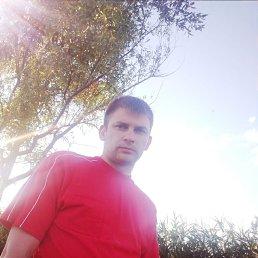 Сергей, 30 лет, Воронеж