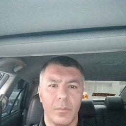 Карен, 44 года, Лыткарино