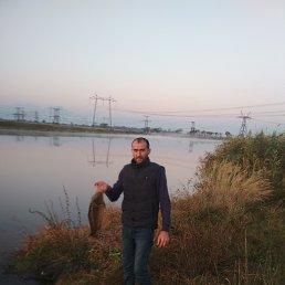 Сармат, 34 года, Ставрополь