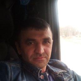 Руслан, 36 лет, Тюмень