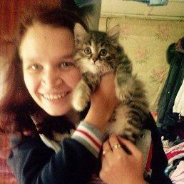 Анна, 29 лет, Йошкар-Ола