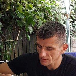 Андрій, 34 года, Рогатин