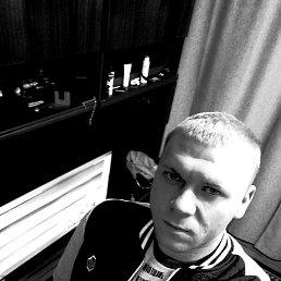 Миша, 29 лет, Талдом