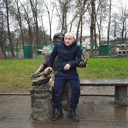 Максим, 28 лет, Псков