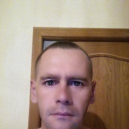 Олег, 38 лет, Тольятти