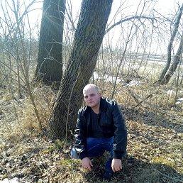 Артём, 28 лет, Краснодар