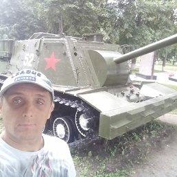 Максим, 42 года, Ярославль