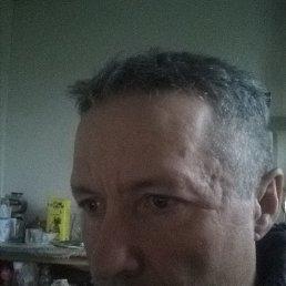 Виктор, 42 года, Белгород
