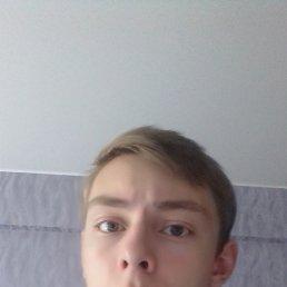 Евгений, 20 лет, Архангельск