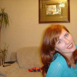 Анжелика, 43 года, Фрязино
