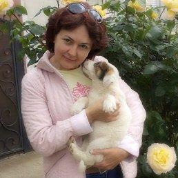 Олена, 58 лет, Черкассы