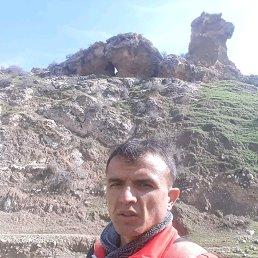 Собир, 33 года, Зеленогорск