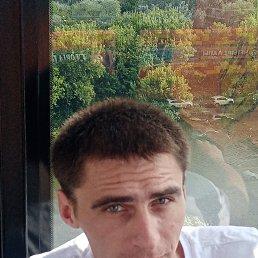 Евгений, Тула, 29 лет