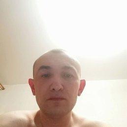 Виталий, 37 лет, Каменское
