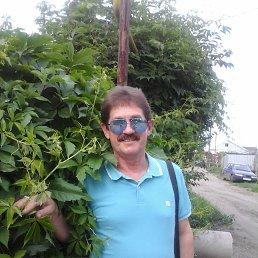 Андрей, 61 год, Шадринск