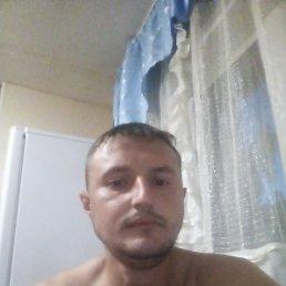 Евгений, 29 лет, Барнаул