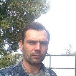 Дима, 42 года, Слуцк