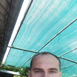 Доктор, 39 лет, Мелитополь
