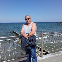 Вася, 41 год, Калининград