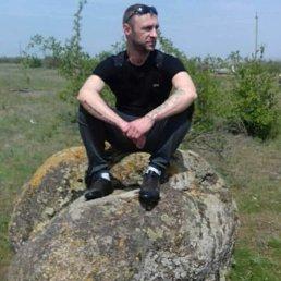 Сашка, 37 лет, Николаев
