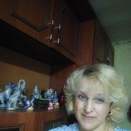 Светлана, 44 года, Данилов